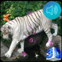 3D Bengal Tiger Live Wallpaper