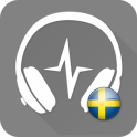 Sveriges Radio Play Sweden FM