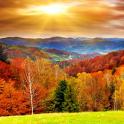Осень Живые Обои