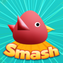 Cool Birds Game