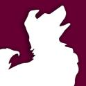 Hundeführerschein des BHV