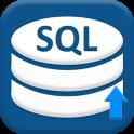 SQL Práctica Cliente y sql consultas base de datos