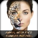 Animal Insta Face Changer Morphing