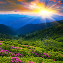 Nature HD Wallpapers