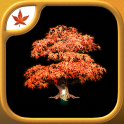 Fire Maple Games Collection