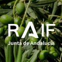 RAIF Andalucía