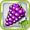 DVR:Bumper - Grape