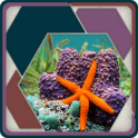 HexSaw - Undersea