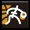 NBB Basketball