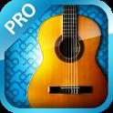 Beste Classic Guitar PRO