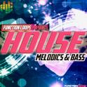 House Melodics & Bass for AEM