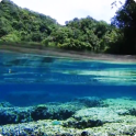 Underwater Live Wallpaper HD