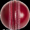 Relaso Cricket