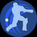 Play Cricket for Fun
