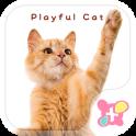 वॉलपेपर और आइकन Playful Cat