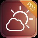 Weather Forecast 15 days - Pro