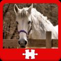 Horses Puzzles