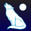 Animal Totem & Spirit Guide