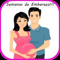 Semanas de Embarazo