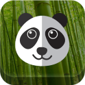 Flying Panda Free Game