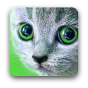 Карточки с животными для детей