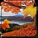 Fallende Blätter Hintergrund