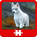 Dogs and Puppies Puzzles