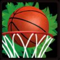 BasketBall Jungle