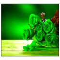 Green Rose Live Wallpaper