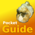 Pocket Guide Guinea Pigs
