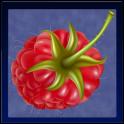 Справочник ягод PRO