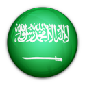 Arabic Translator