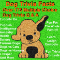 Dog Trivia Facts
