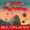 Kite Flyng