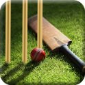 Learn Cricket 2017