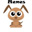 Zap Zap Zueira Dog