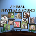 Animal Rhythm & Sound