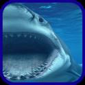 Акула синее море