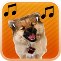 MP3 Animal Ringtones