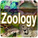 zoologia