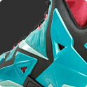 Lebron James Shoes - Releases