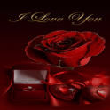 Red Rose Gift LWP