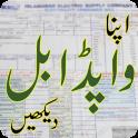 PAK Electricity Bijli Bill Checker Online APP Free