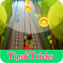 Guide Coin For Subway Surfers