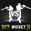 Hit Wicket Cricket