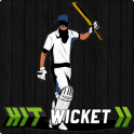 Hit Wicket Cricket - English County League Game
