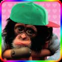 Sweet monkey to dress