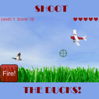 Shoot the Ducks