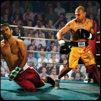 Boxing Legends 3D