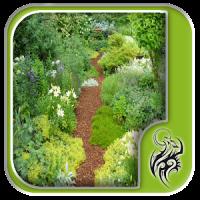 Garden Mulch Design Ideas